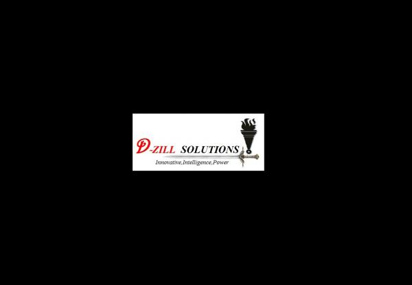 D-ZILL SOLUTIONS